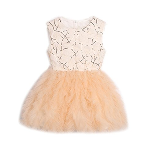 Bambidefoe Baby Girl Tutu Dress costume for Kids Sleeveless Christening tulle Sequined Wedding party Princess Dresses Toddler Girls Clothes as picture 2T - Costumes Rental Seattle