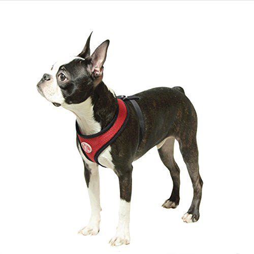 Pictures of Gooby Soft Mesh HarnessSmall Dogs Medium Red 4017 Red 5