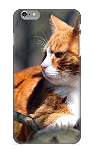 New Arrival Premium Iphone 6 Plus Case Cover With Appearance (animal Cat)