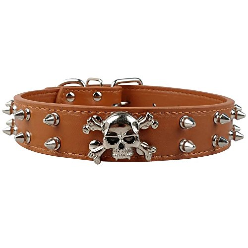 Studded Skull Leather (Didog Leather Dog Collar - Heavy Duty Skull Studded - Fit for Medium Bull Terriers - Brown 17-20