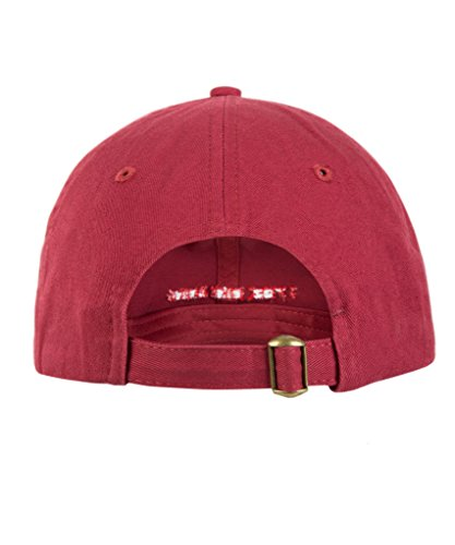 b112bcd99c1 Yeezy Pink Hat I Feel Like Pablo Embroidered Baseball Cap Donda Yzy The  Life Of Pablo