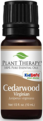 Plant Therapy Cedarwood Virginian Essential Oil  100% Pure, Undiluted, Therapeutic Grade  10 ml (1/3 (Ylang Ylang Leg Foot)