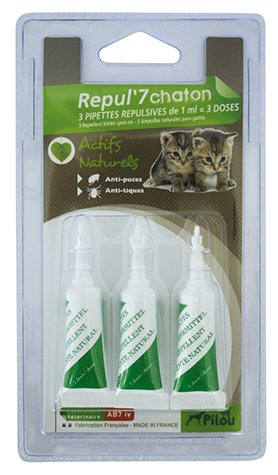 PILOU Pack de 3 pipetas répulsives para Gatito 0,6 ML: Amazon.es: Productos para mascotas