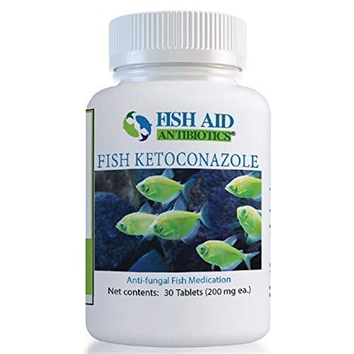 Ketoconazole (200mg) (30ct) by Goldman Pharmaceutical Group Inc USA (Image #1)
