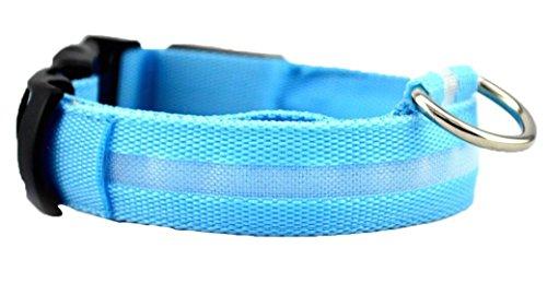 NEO+ Visibilidad para Perros y Collar LED de Seguridad USB Recargable, no Necesita baterias Su Perro sera mas Visible y Seguro (Medio DE TAMAÑO Azul)