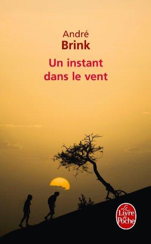 Un instant dans le vent - André Brink