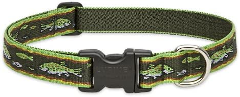 "Brook Trout 1"" Adjustable Large Dog Collar"