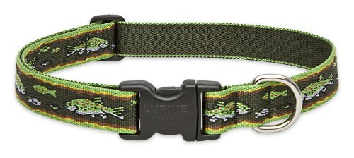 Lupine 1-Inch Brook Trout 12-20-Inch Adjustable Dog Collar for Medium and Large Dogs, My Pet Supplies
