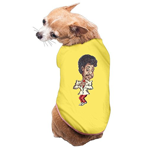 Victorias Secret Costume Diy (Greenday Day Star Portrait Cartoon Pet Dog Pets Costumes Size M Yellow)