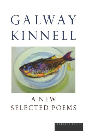 A New Selected Poems ebook