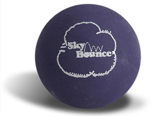 Sky Bounce Color Rubber Handballs for Recreational Handball, Stickball, Racquetball, Catch, Fetch, and Many More Games, 2 1/4-Inch (Purple, 12 Count, 6.00, 3.00, 6.00, 14.00, 2.00) by Sky Bounce