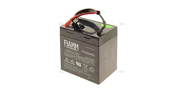 Sterwins 1181200520 - Batería para cortacésped: Amazon.es ...