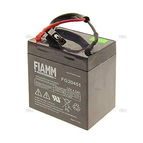 Sterwins 1181200520 - Batería para cortacésped: Amazon.es: Jardín