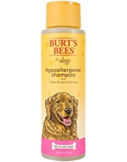 Burt's Bees for Dogs Natural Hypoallergenic Shampoo with Shea Butter and Honey| Puppy and Dog Shampoo, 16 Ounces