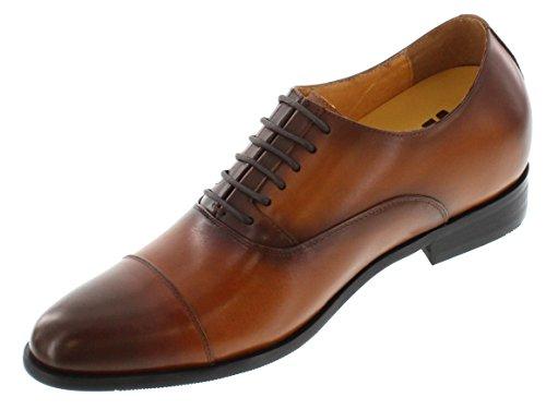 Toto-x9238-7,1cm Grande Taille-Hauteur Augmenter Chaussures ascenseur-Robe Marron à Lacets Chaussures