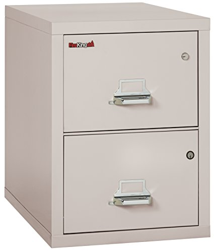 Platinum 2 Drawer UL Class 350 1 hr Fireproof Vertical Legal