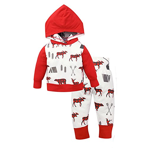Happy GoGo Askwind Baby Girls Floral Hoodie+ Floral Pant Set Leggings 2 Piece Outfits (0-6M, Red2)