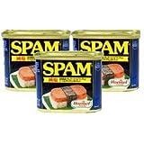 減塩スパムランチョンミート 3缶セット