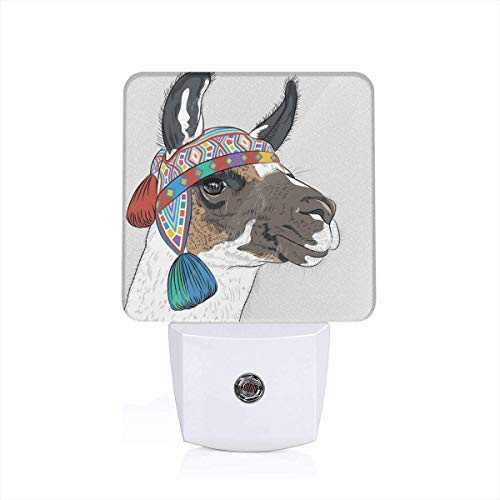 Colorful Plug in Night,Alpaca with an Ethnic Colorful Hat Peruvian Sketch Style Animal Abstract Pattern,Auto Sensor LED Dusk to Dawn Night Light Plug in Indoor for Childs Adults (Best Peruvian Chicken Dc)