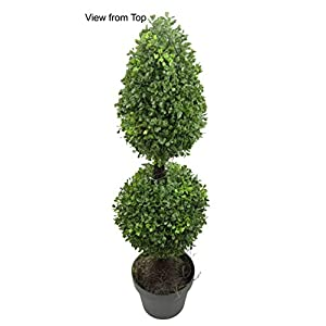 Admired by Nature Aritificial Boxwood 17