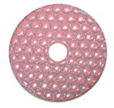 Diamond Professionals 4DP100 Polishing Pad 4'' 100 Grit Dry Platinum Series