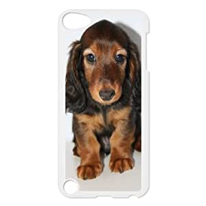 AKERCY Longhair dachshund Phone Case For Ipod Touch 5 [Pattern-6]