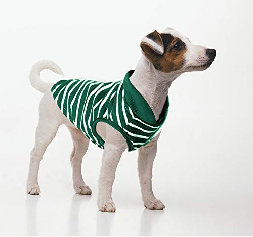 - Idepet Pet Dog Clothes Warm Striped Sweater Pet Puppy Clothes for Small Dog Clothing Teddy Chihuahua Winter Sweater (L, Green)