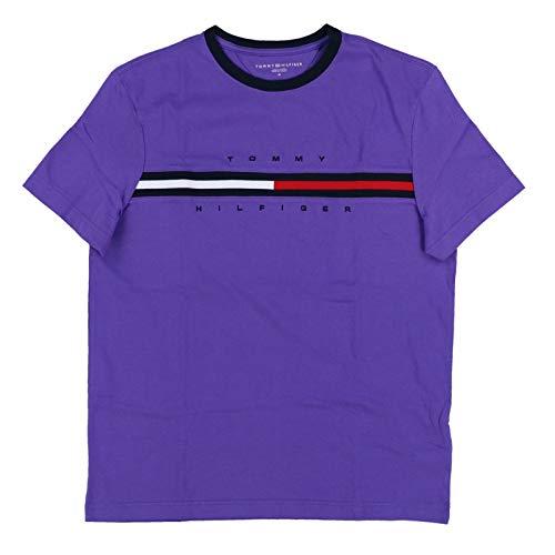 Classic Fit Logo T-shirt - Tommy Hilfiger Men Classic Fit Big Logo T-Shirt (Small, Purple)