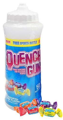 Quench Gum Sports Team Bottle, 8.0 Ounce - 5 Gum Fruit Punch