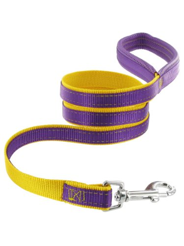 Kakadu Pet Orbit Padded Dog Lead, Nylon Leash, 3/4-Inch by 48-Inch, Purple with Yellow Trim, My Pet Supplies