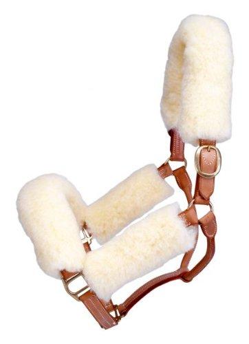 Tough 1 Halter Fleece Set