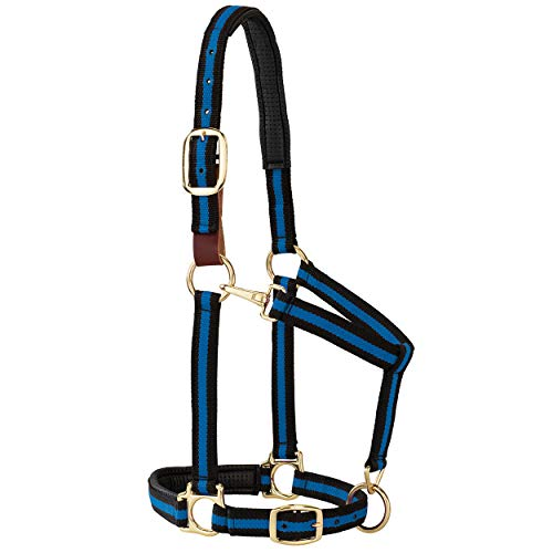 "Weaver Leather Padded Breakaway Adjustable Chin and Throat Snap Halter, 1"" Average Horse or Yearling Draft, Blue Striped"