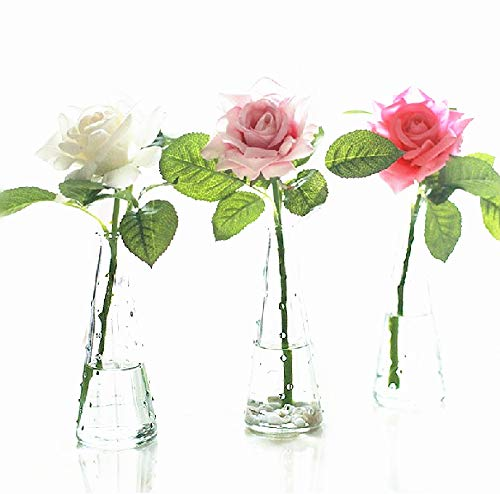 Cyfellbiu 3 Pieces Transparent Blob Vase - Rich Bamboo - Hydroponics Vase (5/8 Washbasin)