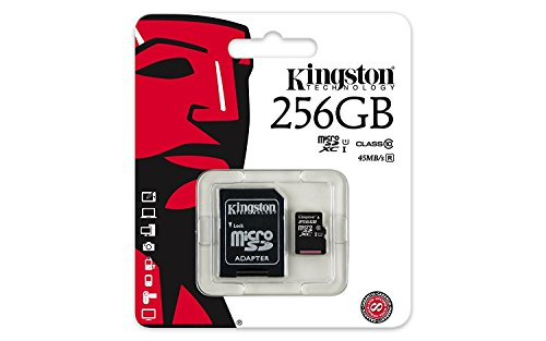 Professional Kingston 256GB K20 plus MicroSDXC Card with custom formatting and Standard SD Adapter! (Class 10, UHS-I) by Custom Kingston for LG (Image #4)