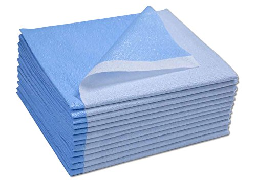 Avalon Papers 357 Stretcher Sheet, Tissue/Poly, 40'' x 72'', Blue (Pack of 50) by Tidi