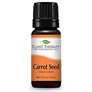Plant Therapy Carrot Seed Essential Oil | 100% Pure, Undiluted, Natural Aromatherapy, Therapeutic Grade | 10 milliliter (⅓ ounce)