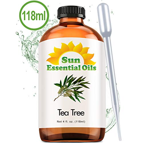 Tea Tree Oil (Large 4 Ounce) Best Essential Oil (Best Essential Oils For Odor Removal)