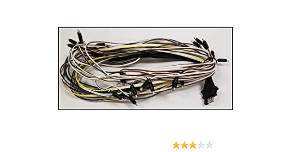 Tremendous Amazon Com Triton 08427 Snowmobile Trailer Wire Harness Wiring Digital Resources Sulfshebarightsorg