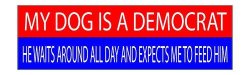 (10x3 Patriotic Bumper Sticker Auto Decal Conservative Republican USA Flag American Patriot (Dog))
