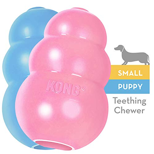 - KONG Puppy Kong Toy, Small, Assorted Pink/Blue