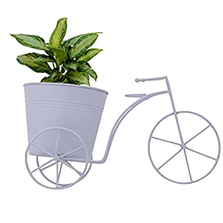 CINAGRO – Cycle Desk Planter, Plant Holder (Large Size)- White Color 41gBeqiCYwL