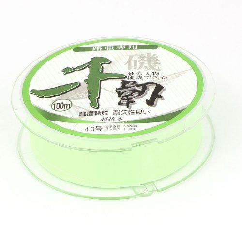 100M 0.32mm Dia Light Green Nylon Abrasion Resistance Fishing Spool Line String