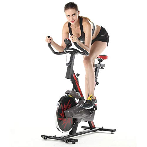 Guoxn Exercise Bike,Indoor Cycling Bike Ultra-Quiet Exercise Bike Home Bicycle Fitness Equipment, Comfortable Seat Cushion (Black)