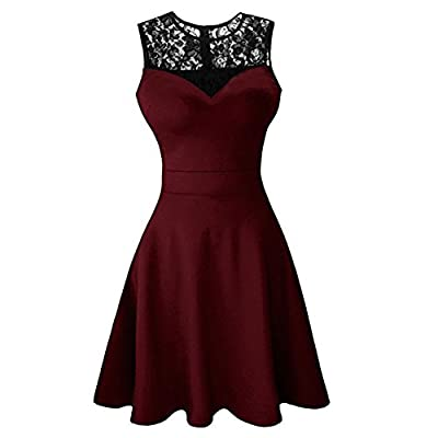 Newbely Women Sleeveless Lace Floral Round Neck Vintage Retro Cocktail Swing Dress