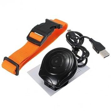Calidad de Digital de perros Collar Cam - Cámara grabadora de vídeo Mini: Amazon.es: Productos para mascotas