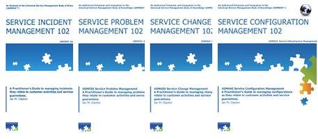 Service Management Practitioner Guides: Volume 1 (USMBOK Practitioner Series - Volume 1)