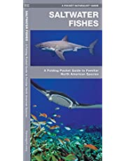 Saltwater Fishes: A Folding Pocket Guide to Familiar North American Species