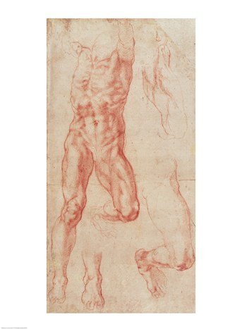 W.13r Study of a male nude, stretching upwards Poster Print by Michelangelo Buonarroti (18 x 24)