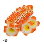 VDV-Artificial-Flowers-20Pcs-Plumeria-Hawaiian-Foam-Frangipani-Flower-Artificial-Silk-Fake-Egg-Flower-for-Wedding-Party-Decoration-Easter-Garland-H15