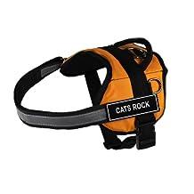 Dean & Tyler Works Fun Harness Cats Rock Pet Harness, Medium, Fits Girth Size: 28-Inch to 38-Inch, Orange/Black
